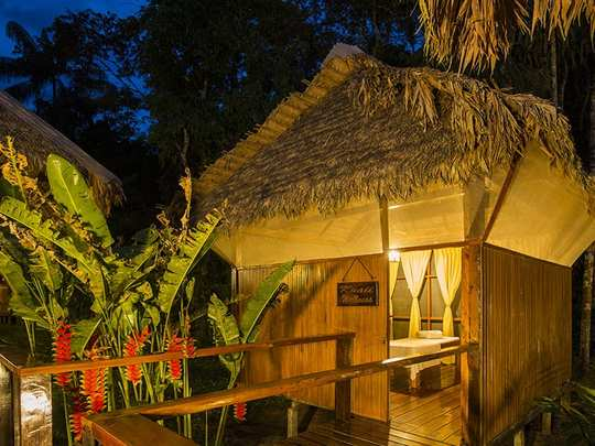 Posada Amazonas Lodge - Tambopata Jungle