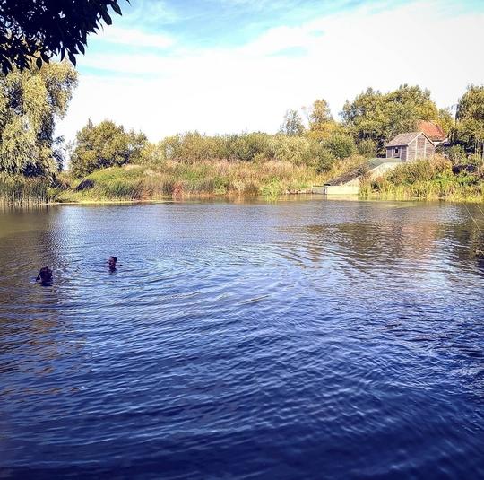 Wild Swim / Paddle Board the River Stour (10 miles)