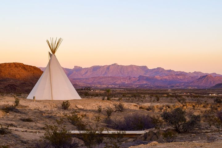 Quirky Tee Pees