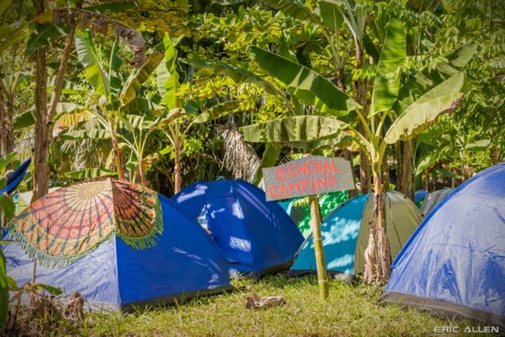 Onsite Camping | Bring Your Own Tent | GA Camping