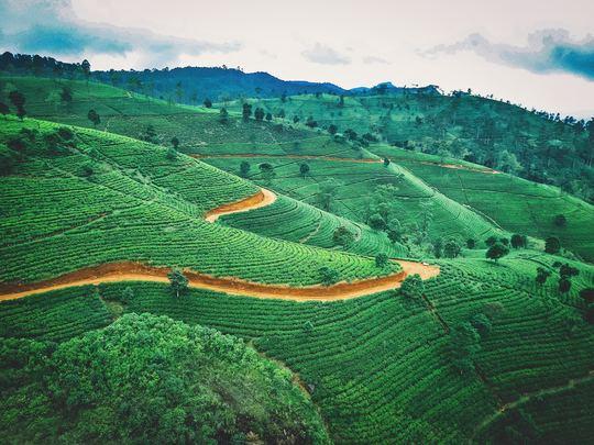 Discover Remote Central Sri Lanka