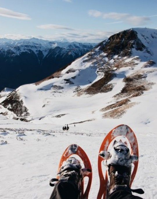 3 sorties encadrées pour découvrir en douceur le patrimoine naturel et culinaire de la Montagne