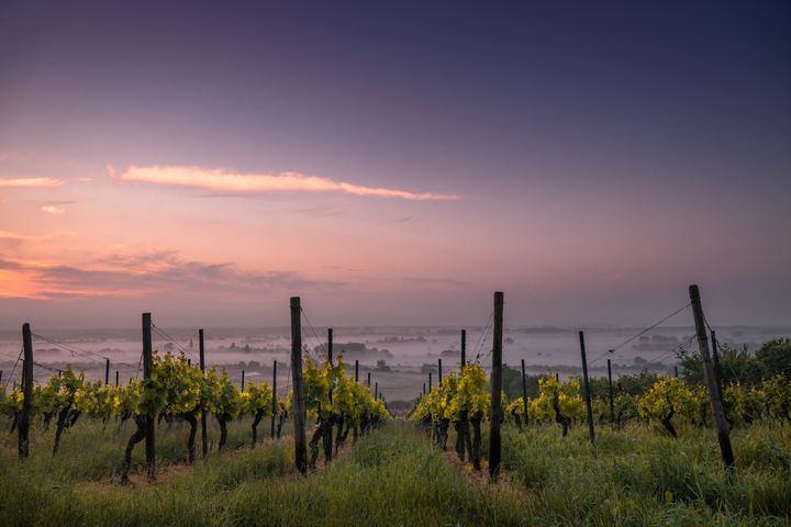 Tuscany03