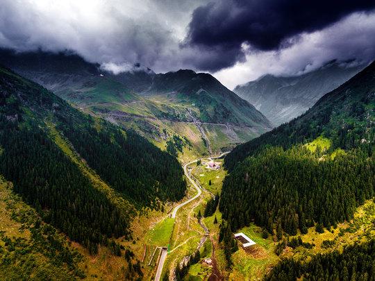A safari adventure through the Romanian Carpathian Mountains