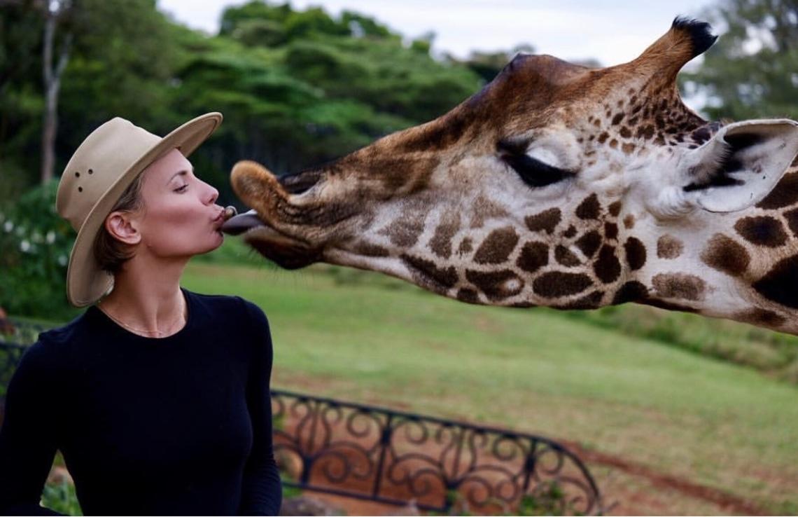 Safari Stylin'