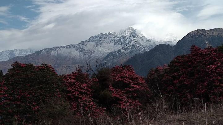 hikinghimalayanepal