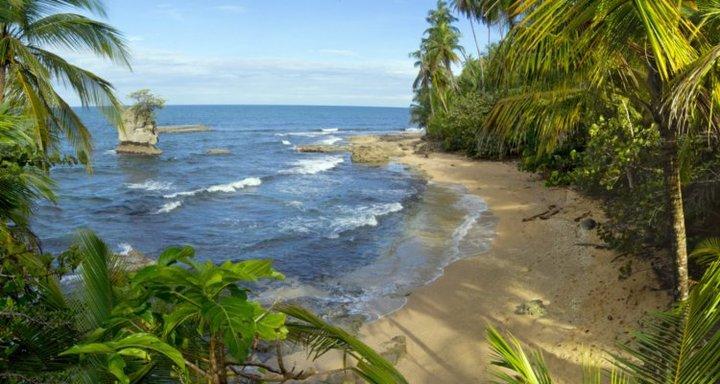 Puerto Viejo to Punta Mona