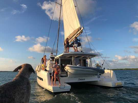 Catamaran trips