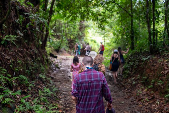 rainforest_excursion_21