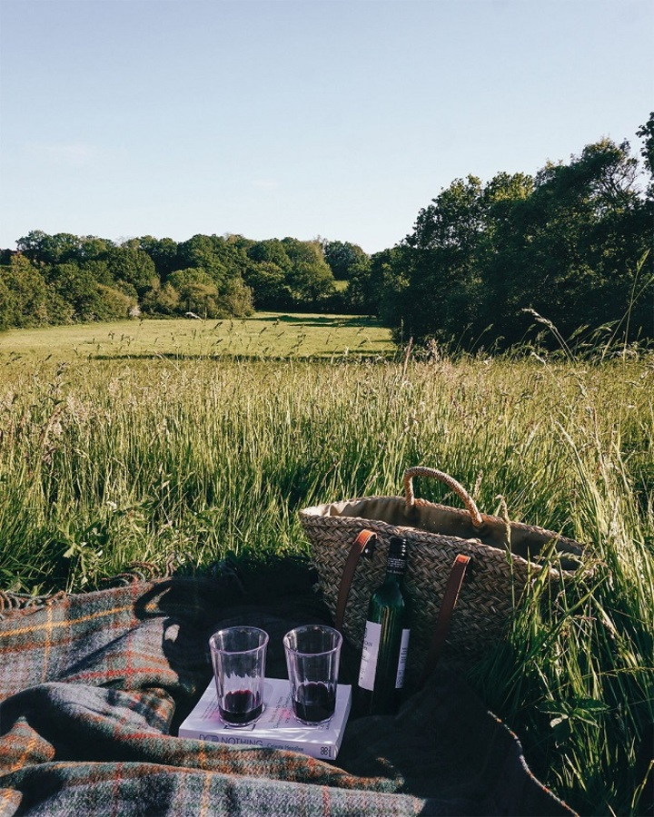 Theseptemberchronicles_Unplugged_picnic