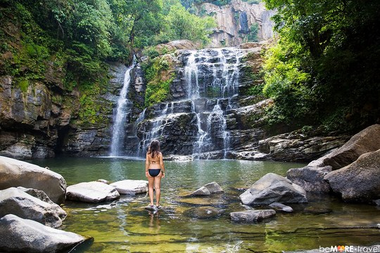 Rainforest & Waterfall Trek
