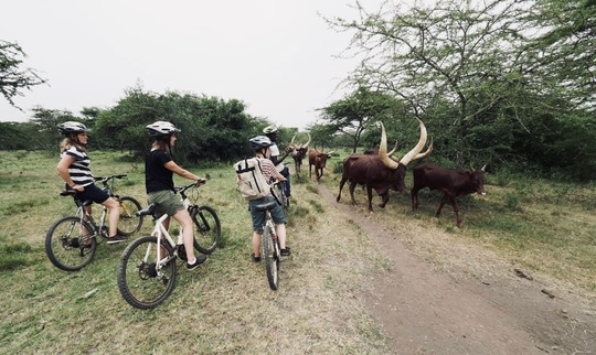 2 days cycling tour to Lake Mburo National Park