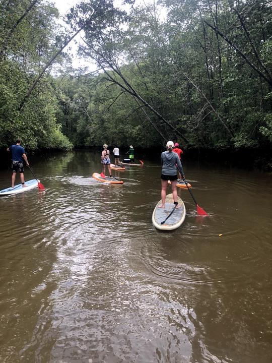 Mangrove SUP & Kayak Tour